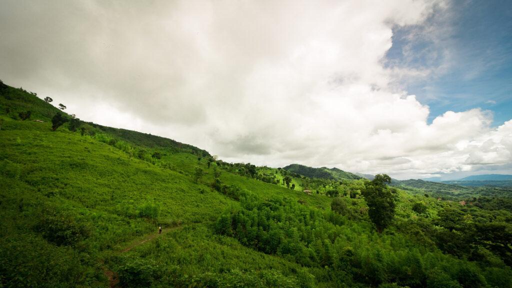 সাকা হাফং